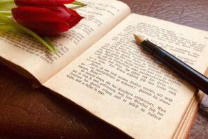 Diese Schrift…..